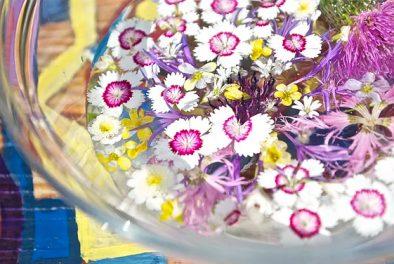 Fleurs bocal d'eau